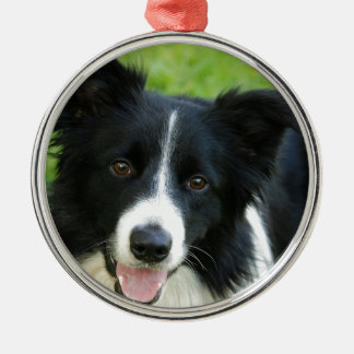 Border Collie Dog Add Text Pet Metal Ornament