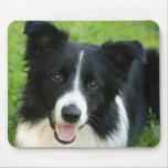 Border Collie Dog Add Text Pet Mousepad