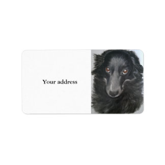 border collie dog face label