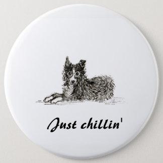 Border collie dog, just chillin' 6 inch round button