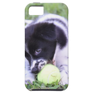 BORDER COLLIE DOG RURAL QUEENSLAND AUSTRALIA CASE FOR THE iPhone 5