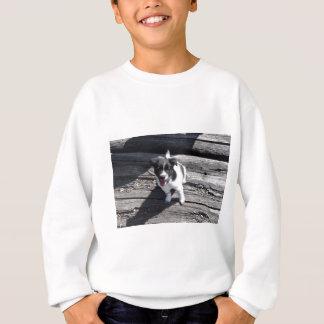 BORDER COLLIE DOG RURAL QUEENSLAND AUSTRALIA SWEATSHIRT