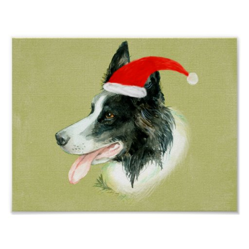 Border Collie Dog w Christmas Santa Hat Poster