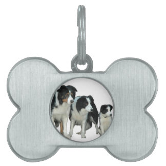 Border Collie Dogs Pet Name Tag