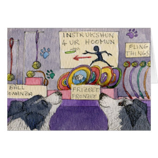 Border Collie dogs window shopping Card