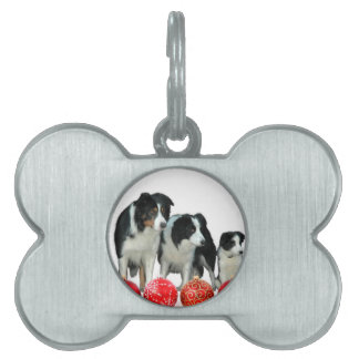 Border Collie Dogs with Red Christmas Ornaments Pet Tags
