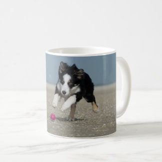 Border collie hunting A ball Coffee Mug
