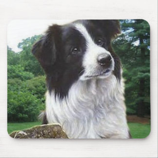 Border collie in park mousepad