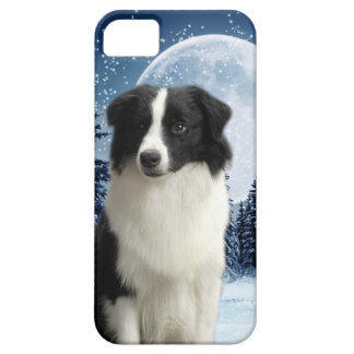 Border Collie iPhone 5 Case