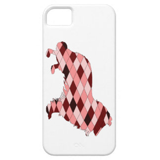 Border Collie iPhone 5 Covers