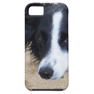 Border Collie items Case For The iPhone 5