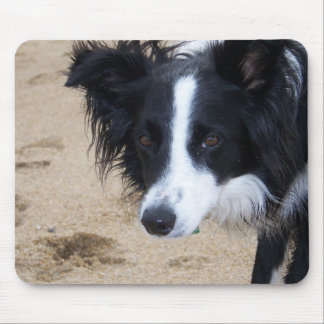 Border Collie items Mouse Pad