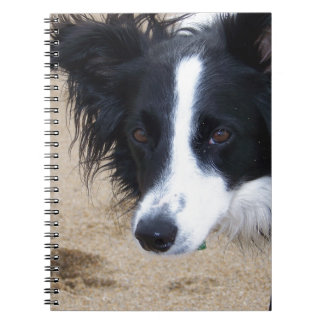 Border Collie items Notebook