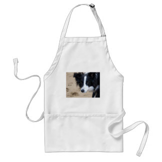 Border Collie items Standard Apron
