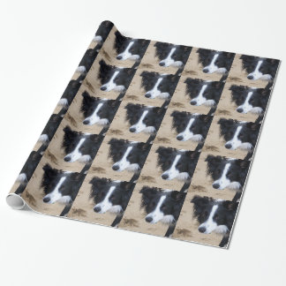 Border Collie items Wrapping Paper