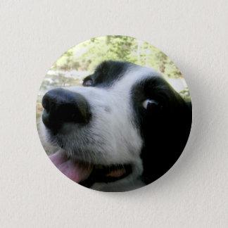 Border Collie Love 2 Inch Round Button