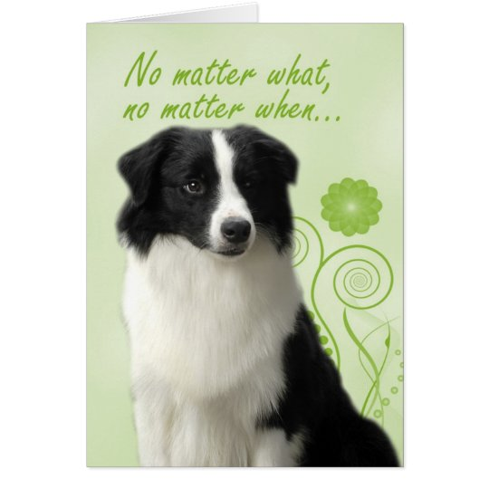 Border Collie Love/Suppport Card
