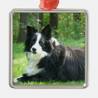 Border Collie Metal Ornament