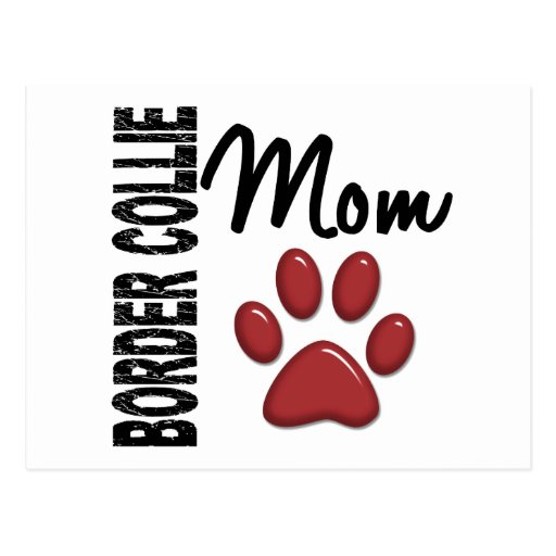 Border Collie Mom 2 Postcard