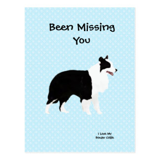Border Collie on Blue Polka Dot - Missing You Postcard