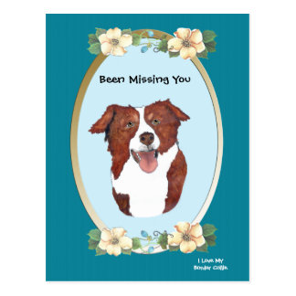 Border Collie on Turquoise Floral - Missing You Postcard