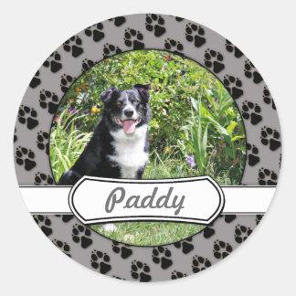 Border Collie - Paddy - Pasten Round Sticker