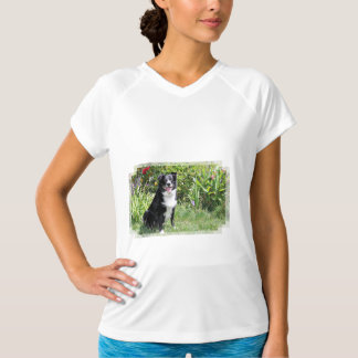 Border Collie - Paddy - Pasten T-Shirt