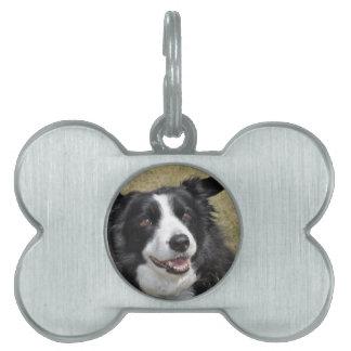 Border Collie Pet Name Tag
