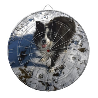 Border Collie photo on products Dartboard