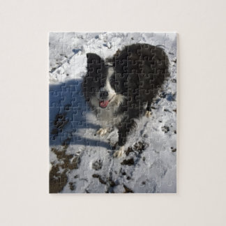 Border Collie photo on products Jigsaw Puzzle