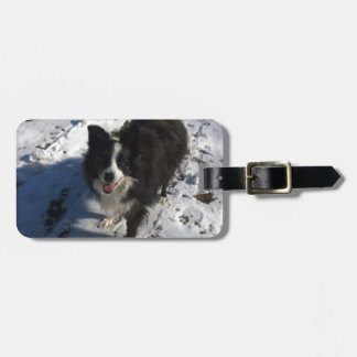 Border Collie photo on products Luggage Tag