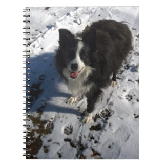 Border Collie photo on products Spiral Notebook