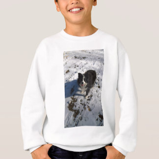 Border Collie photo on products Sweatshirt