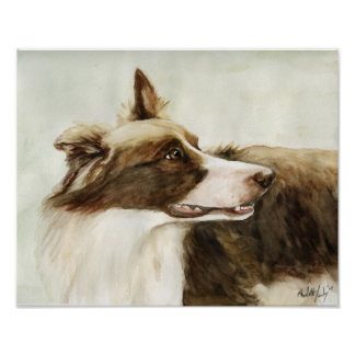 """Border Collie Profile"" Art Reproduction Print"