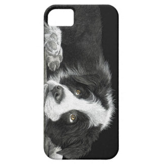 """Border Collie Pup - """"Tell Me More About 'Sheep'"""" iPhone 5 Covers"""