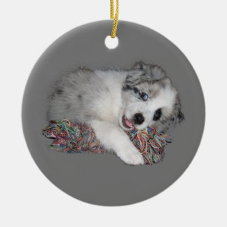 border collie puppy blue merle ceramic ornament