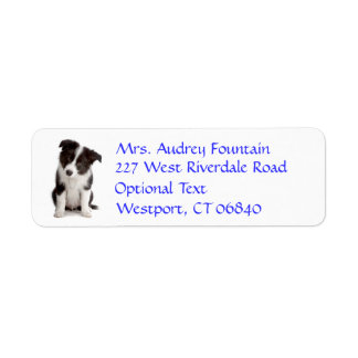 Border Collie Puppy Dog Return Address Name Label