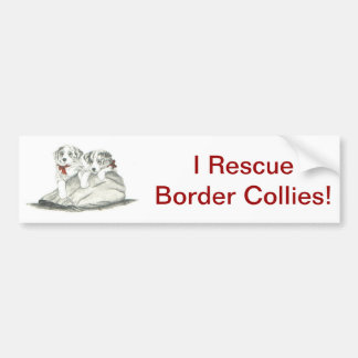 Border Collie Pups Bumper Sticker
