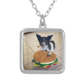BORDER COLLIE QUEENSLAND AUSTRALIA SILVER PLATED NECKLACE