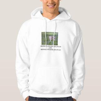 border collie reward hoodie