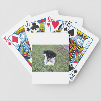 BORDER COLLIE RURAL QUEENSLAND AUSTRALIA BICYCLE PLAYING CARDS