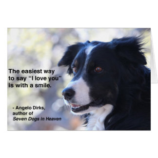 Border Collie Smile Notecard