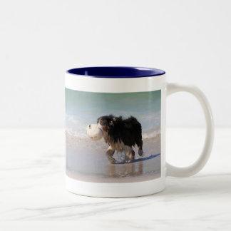 Border Collie - Soccer Anyone? Two-Tone Coffee Mug