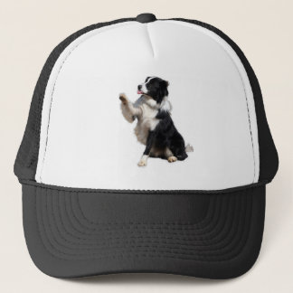 border collie trucker hat
