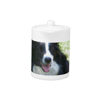 Border Collie Tshirts