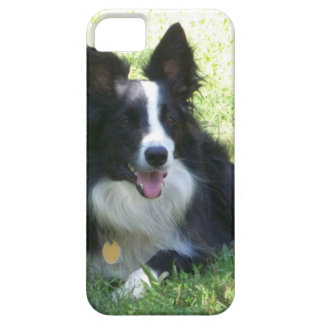 Border Collie Tshirts iPhone 5 Cover