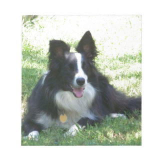 Border Collie Tshirts Notepad