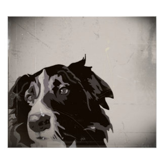 Border Collie urban no. 1 art poster