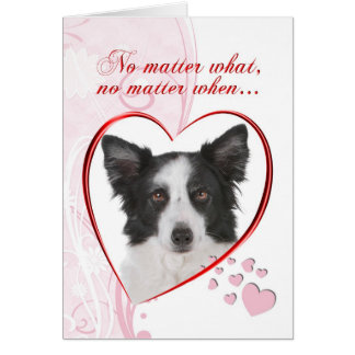 Border Collie Valentine Card