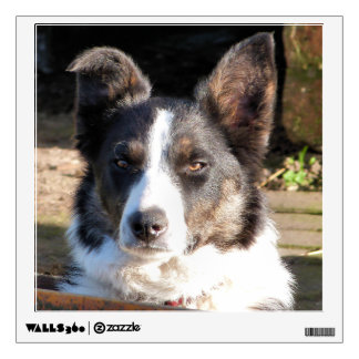 BORDER COLLIE WALL STICKER